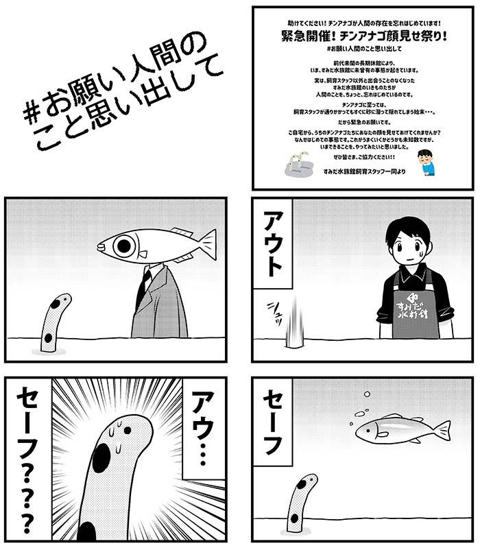 見せ 祭り 顔 チンアナゴ 「チンアナゴ顔見せ祭り!」すみだ水族館が緊急開催 |